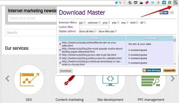 Download Master extension