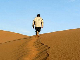 Promotion of a New Website: How to Pass Through the Sahara Desert and Stay Alive?